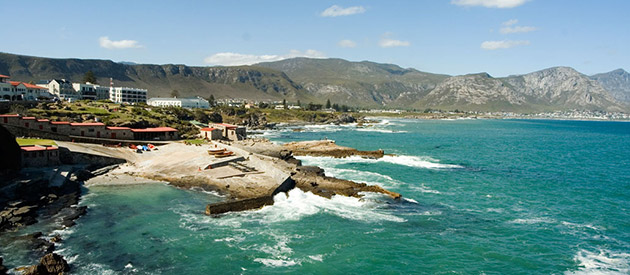 The Town of Hermanus is the Heart Of the Whale Route