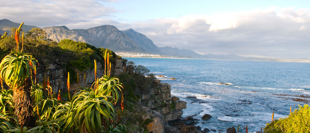 Hermanus-Info.co.za