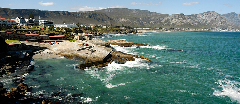 Hermanus Info www.hermanus-info.co.za, Accommodation, Activities in Hermanus, Western Cape, South Africa